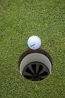 ALMERE  - golfbal valt in hole , bal, Golf, regels,    COPYRIGHT KOEN SUYK