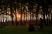 Warm glow of sunset through woods in on the edge off Laboni Beach looking out to the Bay of Bengal near in Cox Bazar, Chittagong Division, Bangladesh, Asia. (photo by Andrew Aitchison / In pictures via Getty Images)
