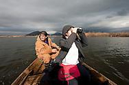 Visiting the special reserve at Pančeva oka, a nesting site for the rare Dalmatian pelican (Pelicanus crispus) on Lake Skadar. Lake Skadar national park, Montenegro. Pictured, Bjanka Prakljačić, Project Coordinator of the Conservation of Pelicans of Skadar Lake Project, Noe Conservation © Rudolf Abraham