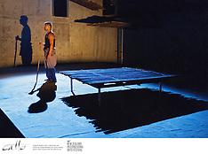 NZ Int'l Arts Festival 12 - Michael James Manaia