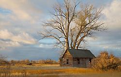 Old Homestead, Rigby, Idaho