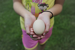 20120625 The Daily Egg - Largest egg. Pulled from the hen house today. <br /> photo by Laura Mueller<br /> www.lauramuellerphotography.com