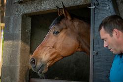 Hermans Bart, BEL, Gorki van de Pertjeshoeve<br /> Stal Hermans - Kasterlee 2018<br /> © Hippo Foto - Dirk Caremans<br /> 07/05/2018
