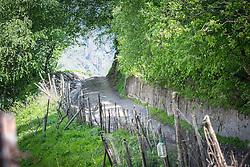 14 June 2016, Kazbegi (Stepantsminda), Georgia: Path leading up to the 14th century Holy Trinity Church, also known as Gergeti Trinity Church, located on a hilltop near the dormant stratovolcano of Mount Kazbek.