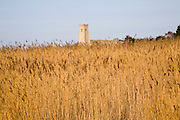 Blythburgh church in the marshes and reeds, Suffolk, England