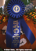 York County, PA. Fair Blue Ribbon
