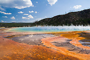 Colorful and abstract details around the edge of steaming hot Grand Prismatic Spring, Yellowstone National Park, Washington. The colors come from thermophilic bacteria.
