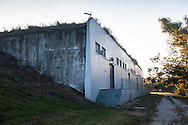 Bunker in Belle Chase where Tulane's Natural History collection stored its' mammal and reptile collection