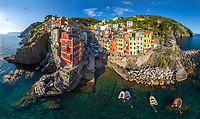 Aerial view of bird flying over Vernazza cityscape, Italy