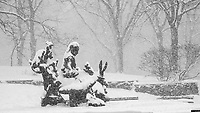 """""""Alice in Wonderland"""" sculpture by American sculptor José de Creeft and donated to Central Park by philanthropist George Delacorte in 1959 as a gift to the children of New York."""