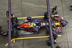 April 7, 2017 - Shanghai, China - Motorsports: FIA Formula One World Championship 2017, Grand Prix of AChina, .#3 Daniel Ricciardo (AUS, Red Bull Racing) (Credit Image: © Hoch Zwei via ZUMA Wire)