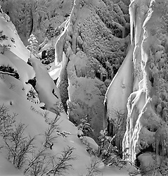 Ice Palace and Tree. Telluride, CO