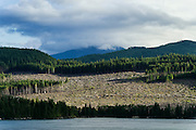 Clearcutting along the Campell River, British Columbia, Canada