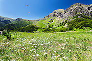 Spring time in Balkan Mountains