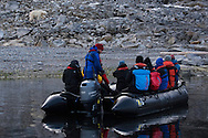 Polar Quest group checking out a polar bear from the Zodiac inflatable boat, Svalbard, Norway, Arctic ecotourism