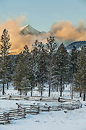 Early winter snows on the san francisco peaks
