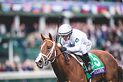 November 2, 2018: Bulletin #5, ridden by Javier Castellano, wins the Juvenile Turf Sprint on Breeders' Cup World Championship Friday at Churchill Downs on November 2, 2018 in Louisville, Kentucky.