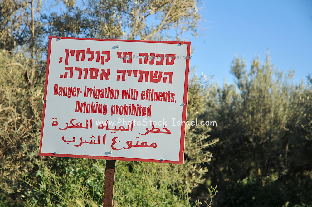"""A warning sign in Hebrew, Arabic and English: """"Danger irrigation with effluent, drinking prohibited"""" Due to a shortage of water, Israel is trying to find ways of conserving potable water"""