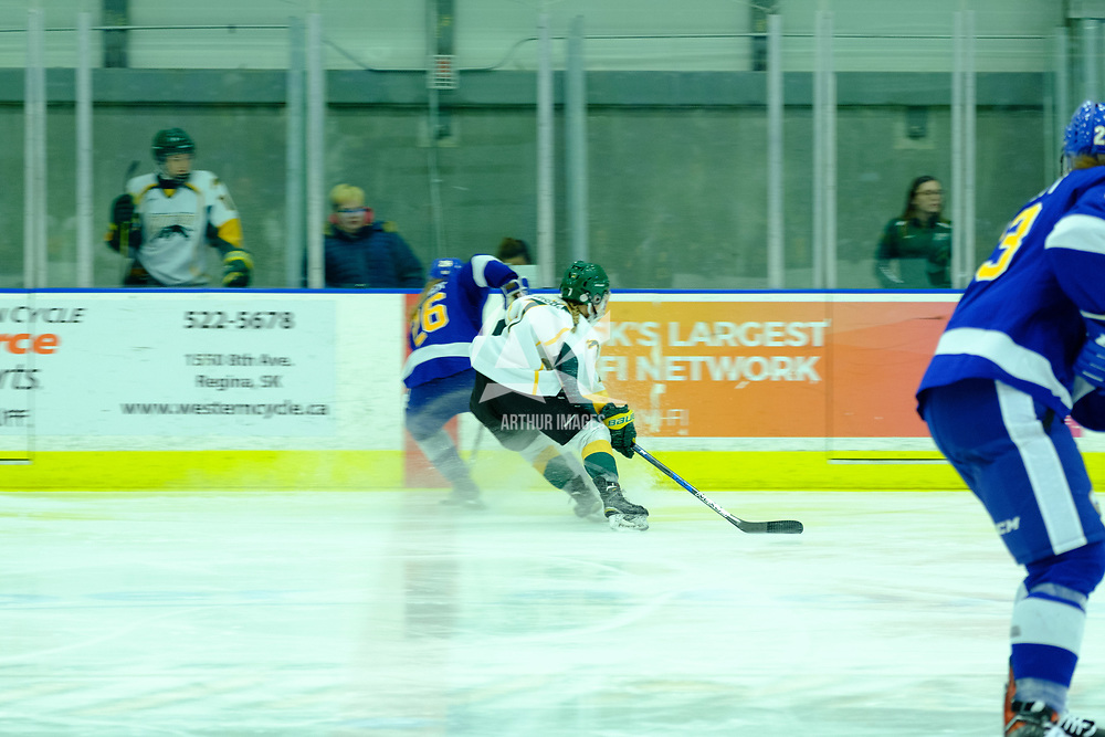 Women's Hockey Home Game on October 21 at Co-operators Arena. Credit Matt Johnson/©Arthur Images 2017