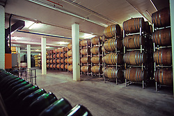 Bergkelder Stellenbosch Winery