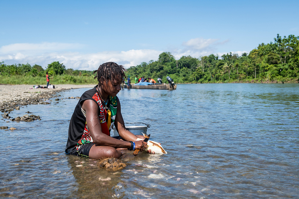 Jeylin Kokumu sits in the shallows of the Clay River as she peels a cassava root in Likan, East Sepik Province, Papua New Guinea.<br /> <br /> (June 20, 2019)