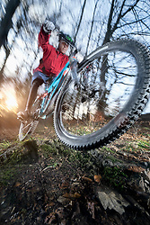 Mountain biker doing a wheelie over roots, Bavaria, Germany
