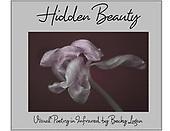 Hidden Beauty Merchandise