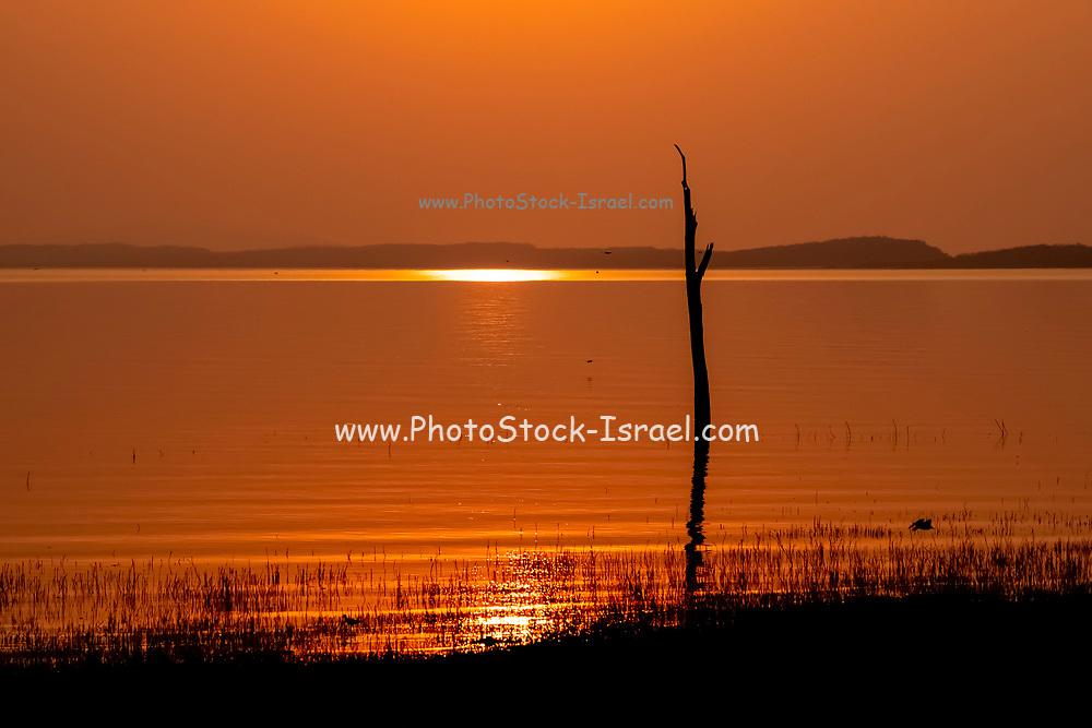 Golden African Sun set over Lake Kariba, Zimbabwe