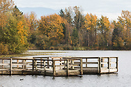 The dock at Mill Lake Park in Abbotsford, British Columbia, Canada. The dock is next to the lake's main boat launch and is used for wildlife viewing and fishing.
