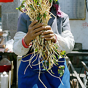 A Bai ethnic minority woman holds a bunch of mountain vegetables at Dali market, Yunnan province, China.