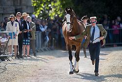 Owen Michael, (GBR), Bradeley Law<br /> CCI4* - Mitsubishi Motors Badminton Horse Trials 2016<br /> © Hippo Foto - Jon Stroud<br /> 06/05/16
