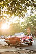 Car parked on street under tree, Havana, Cuba