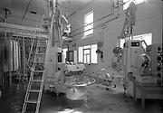 08/06/1967<br /> 06/08/1967<br /> 08 June 1967<br /> Killeshandra Co-Operative Creamery Ltd., Co. Cavan,  producing Kerrygold Jigger Cream packs. The factory floor.