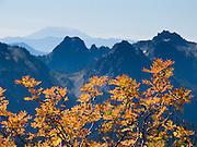 Mount Saint Helens and the Tatoosh Range, seen from Mount Rainier National Park, Washington, USA