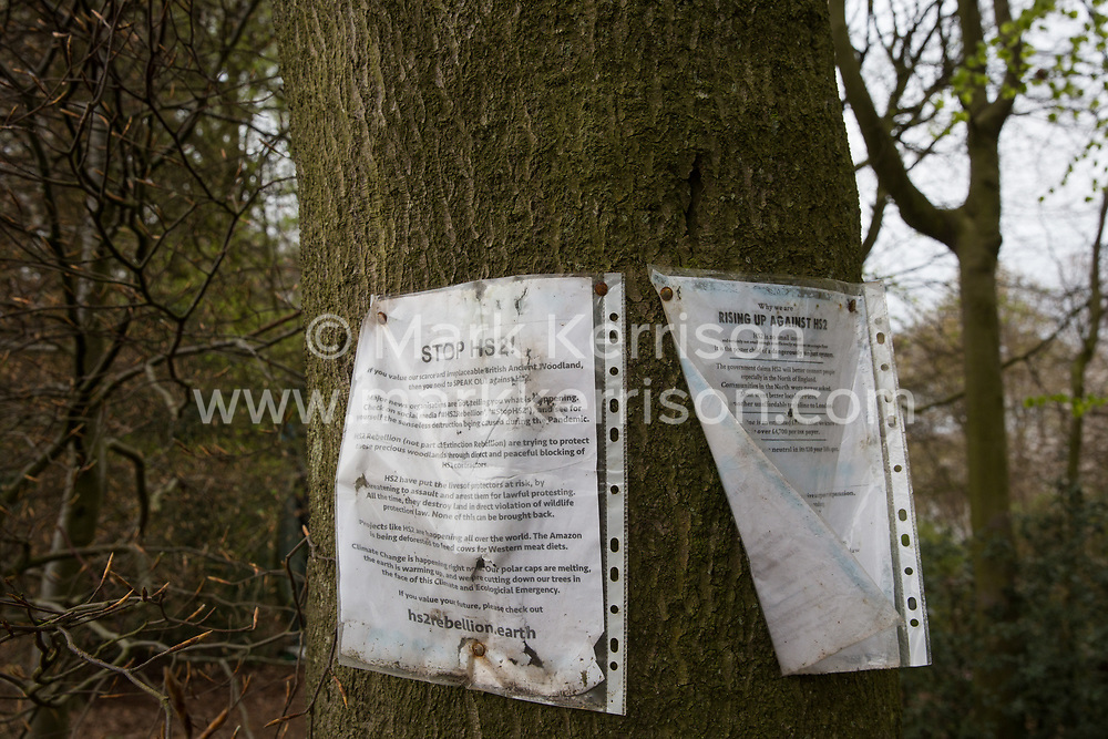 Wendover, UK. 28th April, 2021. Stop HS2 notices fixed to trees close to a protection camp occupied by environmental activists opposed to the HS2 high-speed rail link in ancient woodland at Jones Hill Wood in the Chilterns AONB. Felling of Jones Hill Wood, which contains resting places and/or breeding sites for pipistrelle, barbastelle, noctule, brown long-eared and natterer's bats and is said to have inspired Roald Dahl's Fantastic Mr Fox, has resumed after a High Court judge refused environmental campaigner Mark Keir permission to apply for judicial review and lifted an injunction preventing further felling.
