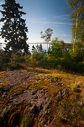 The Lookout, Witherle Woods, Castine, Maine, US