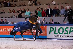 Heartbreaker<br /> Paard van het Jaar<br /> KWPN Hengstenkeuring - 's Hertogenbosch 2016<br /> © Hippo Foto - Dirk Caremans<br /> 04/02/16
