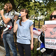 Animal rights activists protest the mass killing of Pilot Whales and other cetaceans during the infamous Grindadrap hunts in the Faroe Islands outside Denmark Embassy  on 31 August 2018, London, UK.