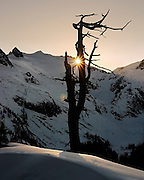 A dead snag catches the last rays as the sun sets below Snow King Mountain, Glacier Peak Wilderness, Washington.