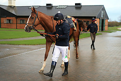 23rd November 2017 - Michael Owen Horse Racing - Former footballer Michael Owen walks back to the stables at Manor House Stables in Cheshire ahead of his first ever race as a jockey - Photo: Simon Stacpoole / Offside.