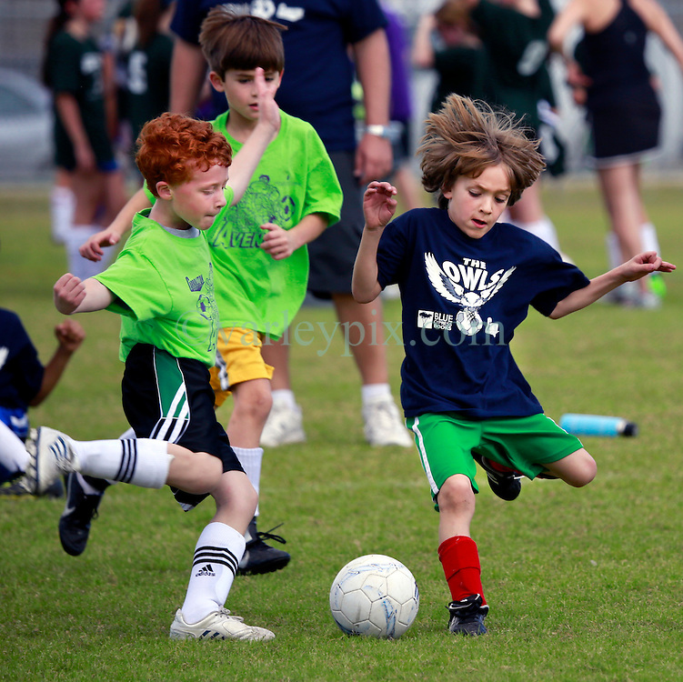 26 January 2013. New Orleans, Louisiana,  USA. .Carrolton Boosters Soccer. Under 8's. The Owls play the Avengers in a 3-3 draw..Photo; Charlie Varley.