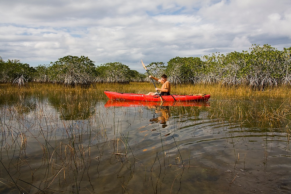Everglades specialist guide Garl Harrold kayaks in Everglades National Park, Florida.