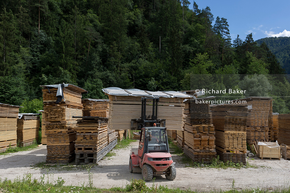 New-sawn planks piled up in a timber yard near a pine forest in rural Slovenia, on 18th June 2018, in Bled, Slovenia.