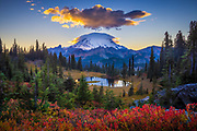 Sunset in Mount Rainier National Park in Natches Peak trail area near Tipsoo Lake<br /> .....<br /> Tipsoo Lake, at an elevation of 5299 ft (1615 m) above sea level, is an alpine lake within the Northern Cascade Range located near the summit of Chinook Pass in Pierce County, Washington. The area is popular with photographers as the shores and surrounding area abound with the vibrant yellow, orange and purple colors of huckleberry, lupine, Indian paintbrush, and Partridgefoot. There are several hiking trails near the lake that vary in degrees of difficulty and share spectacular views of Mount Rainier and the surrounding landscape.