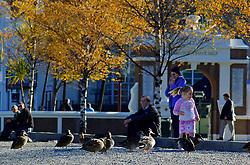 A beira do Lago Wakatipu, em Queenstown, os habitantes da pequena cidade aproveitam a tarde de sol para relaxar. Enquanto crianças se divertem com os patos, adultos aproveitam a paisagem. FOTO: Lucas Uebel/Preview.com