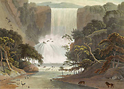 Cascade on Sneeuberge aka Sneeuberg [here as Sneuwberg] hand colored plate from the collection of  ' African scenery and animals ' by Daniell, Samuel, 1775-1811 and Daniell, William, 1769-1837 published 1804