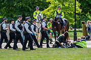 """The picnic moves and, once resettled, the police start to break up large groups - A so called 'Mass' Gathering takes place in Hyde Park as a small group of protestors say no to the """"coronavirus bill"""" and no to the """"unlawful lockdown"""", as they fear for their freedom during the coronavirus pandemic. The protest was outnumbered by police and journalists and attracted people against vaccination, 5G, Bill Gates, paedophiles, tracking and many other things. The 'lockdown' continues for the Coronavirus (Covid 19) outbreak in London."""