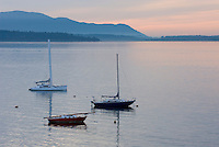 Three sailboats anchored in Bellingham Bay, Lummi Island is in the distance, Bellingham Washington USA
