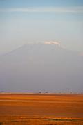 Mount Kilimanjaro, the tallest free standing mountain in the world, rising above an orange plain,, Tanzania, Africa