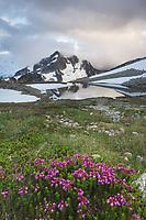 Whatcom Peak shrouded in clouds near upper Tapto Lake, North Cascades National Park Washington